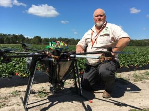 Helicopter drone used to drop self-destructing predatory bugs on strawberry crops